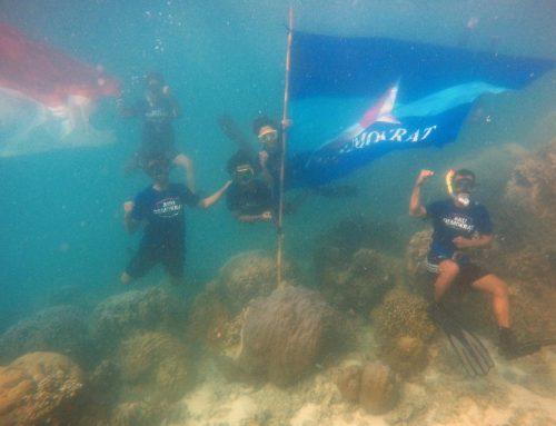 Relawan PD Kibarkan 19 Bendera di Darat dan Bawah Laut serta Tanam Mangrove